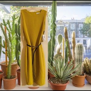 Calvin Klein Chartreuse Dress